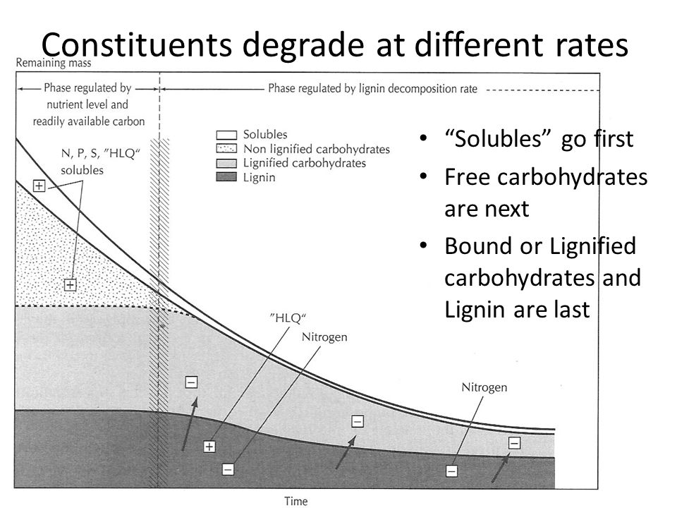 Constituents degrade at different rates Solubles go first Free carbohydrates are next Bound or Lignified carbohydrates and Lignin are last
