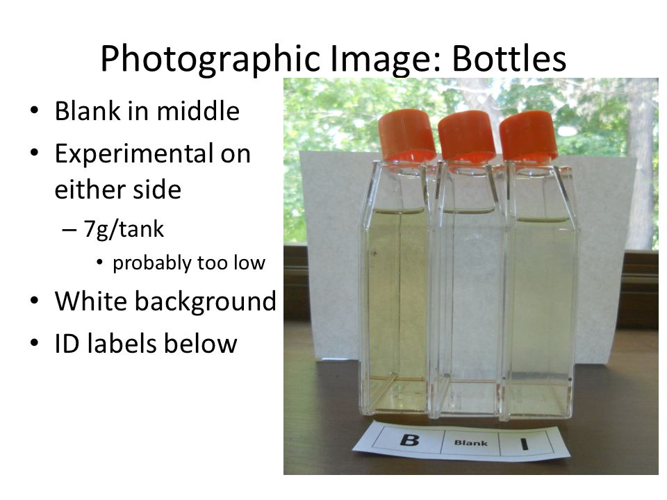 Photographic Image: Bottles Blank in middle Experimental on either side – 7g/tank probably too low White background ID labels below