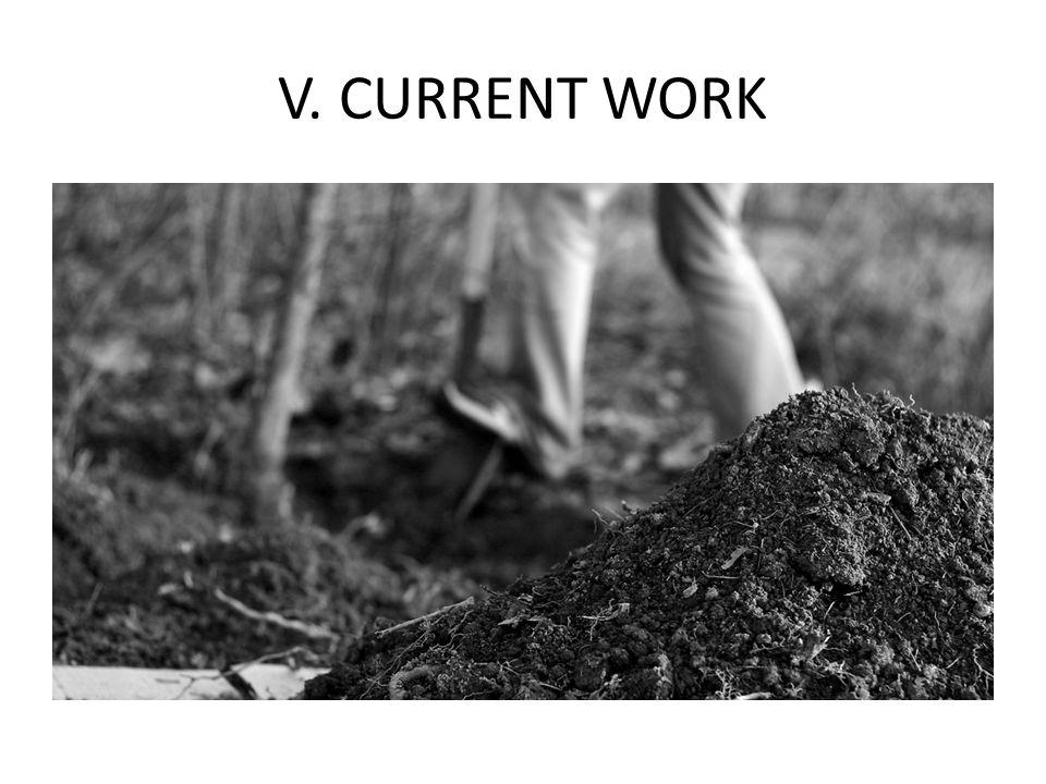 V. CURRENT WORK