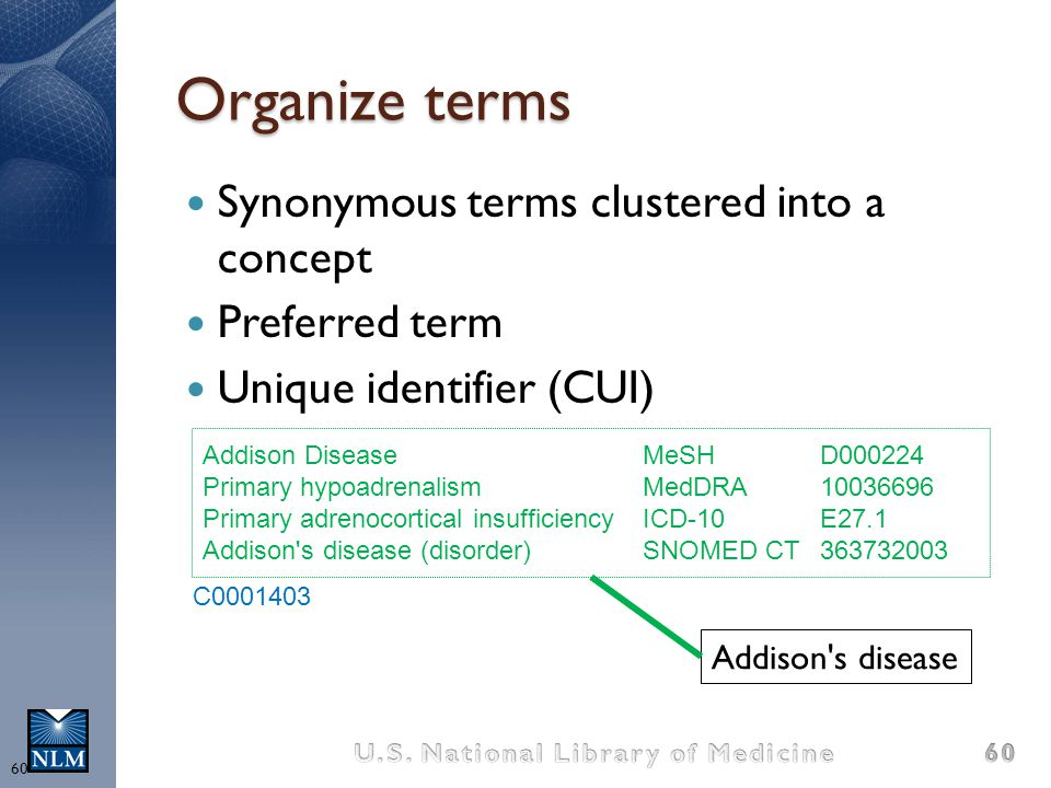 Organize terms Synonymous terms clustered into a concept Preferred term Unique identifier (CUI) Addison's disease Addison DiseaseMeSHD000224 Primary h
