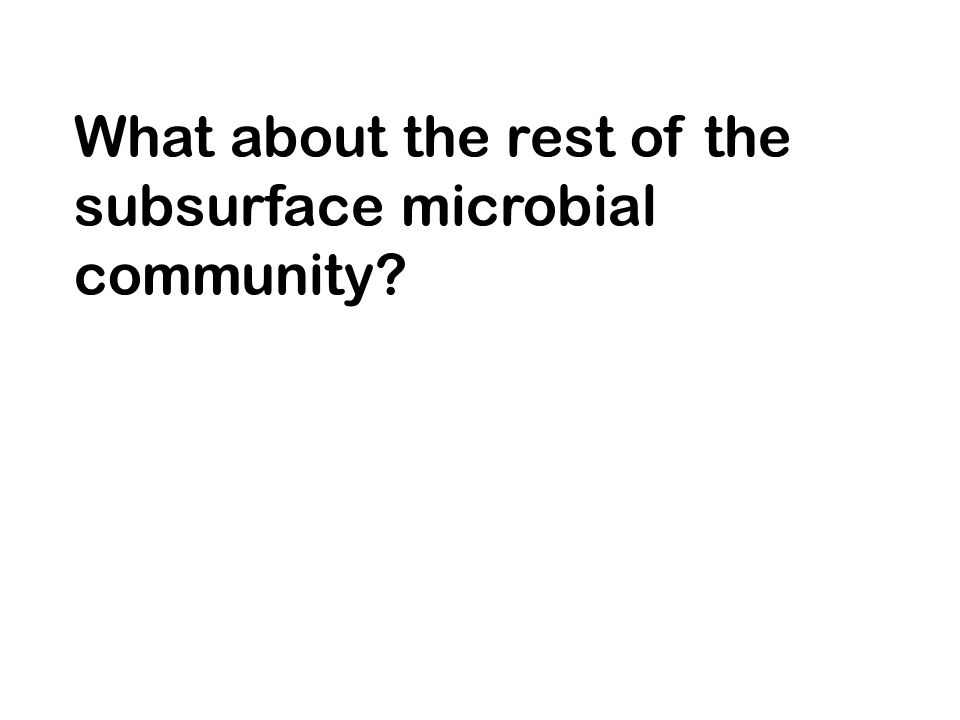 What about the rest of the subsurface microbial community