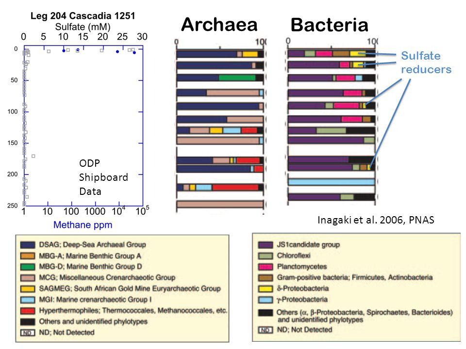Inagaki et al. 2006, PNAS Archaea Bacteria ODP Shipboard Data Sulfate reducers