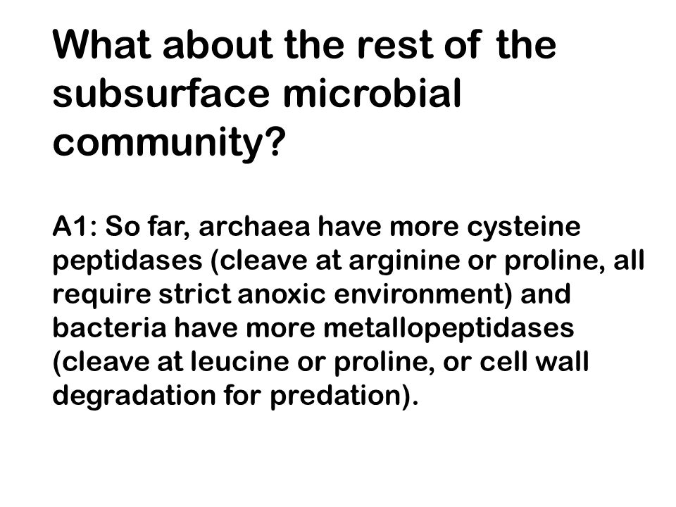 What about the rest of the subsurface microbial community.
