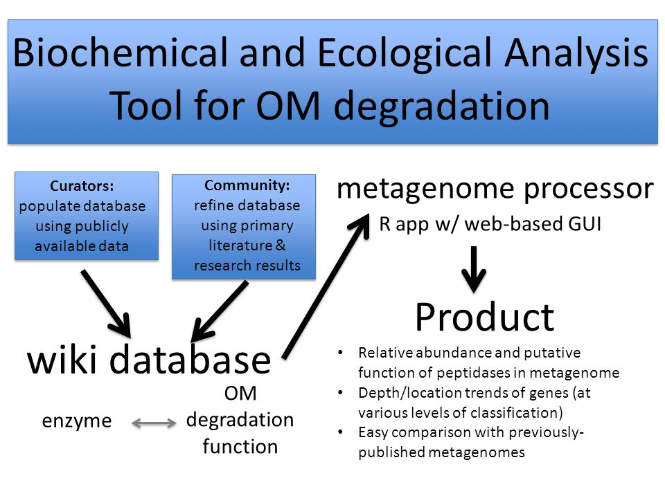 wiki database enzyme OM degradation function Curators: populate database using publicly available data Community: refine database using primary literature & research results metagenome processor R app w/ web-based GUI Product Relative abundance and putative function of peptidases in metagenome Depth/location trends of genes (at various levels of classification) Easy comparison with previously- published metagenomes Biochemical and Ecological Analysis Tool for OM degradation