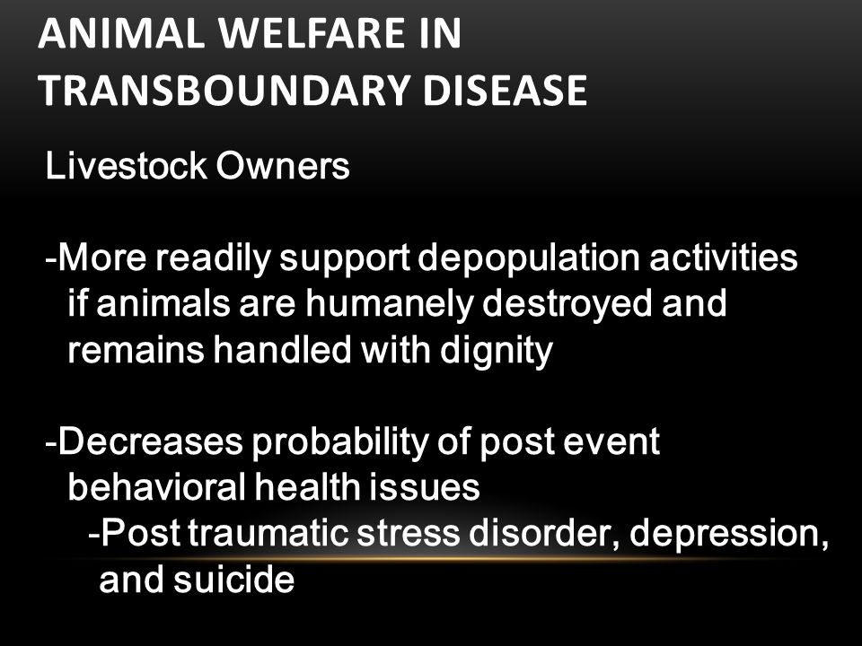 ANIMAL WELFARE IN TRANSBOUNDARY DISEASE Livestock Owners -More readily support depopulation activities if animals are humanely destroyed and remains handled with dignity -Decreases probability of post event behavioral health issues -Post traumatic stress disorder, depression, and suicide-