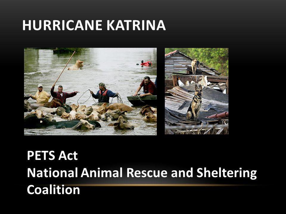 HURRICANE KATRINA PETS Act National Animal Rescue and Sheltering Coalition