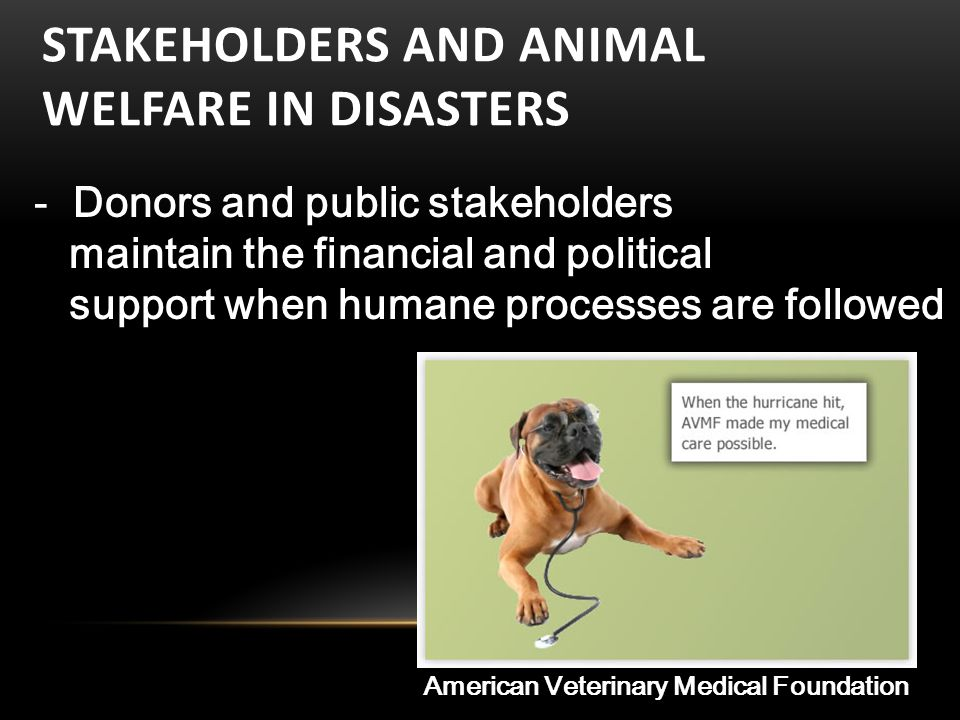 STAKEHOLDERS AND ANIMAL WELFARE IN DISASTERS - Donors and public stakeholders maintain the financial and political support when humane processes are followed American Veterinary Medical Foundation