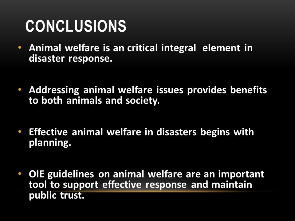 CONCLUSIONS Animal welfare is an critical integral element in disaster response.