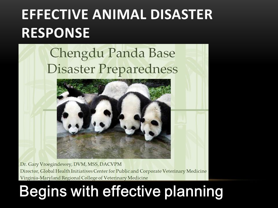 EFFECTIVE ANIMAL DISASTER RESPONSE Begins with effective planning