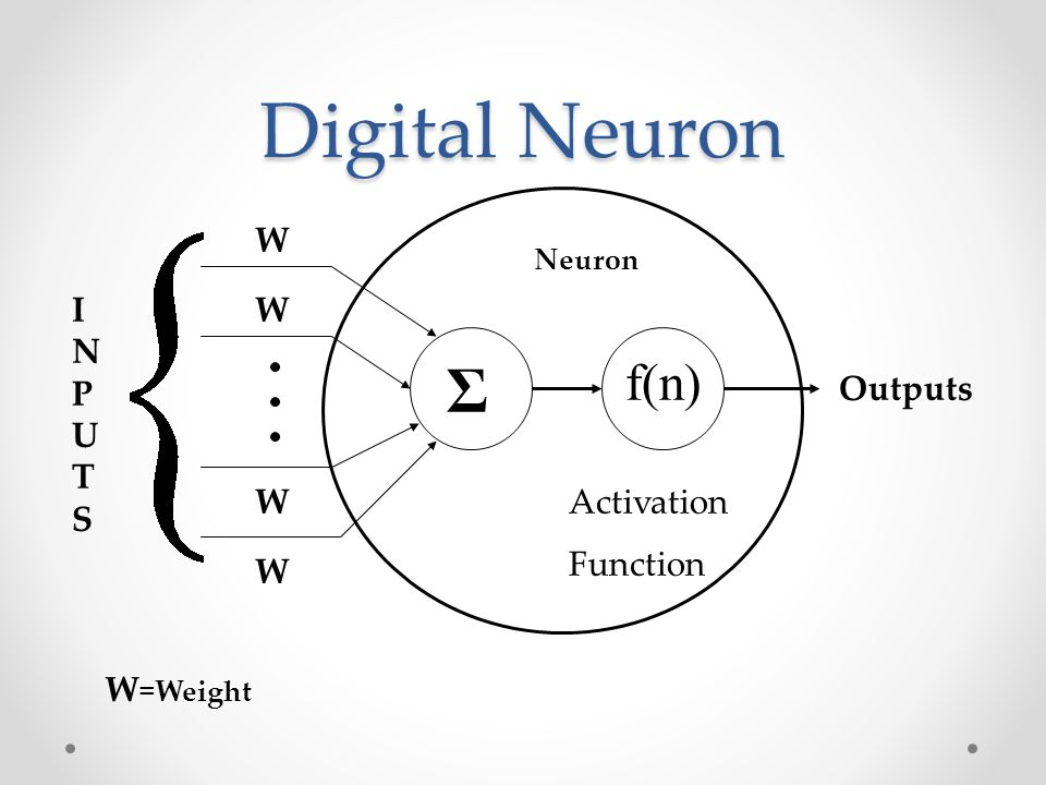 Digital Neuron Σ f(n) W W W W Outputs Activation Function INPUTSINPUTS W =Weight Neuron