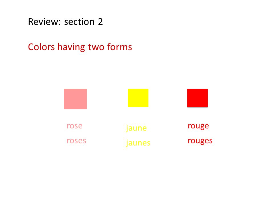 rouge rouges Review: section 2 Colors having two forms rose roses jaune jaunes