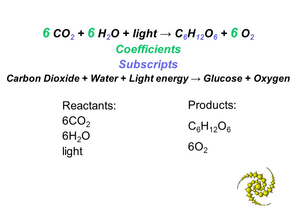 Coefficients Subscripts Carbon Dioxide + Water + Light energy → Glucose + Oxygen Reactants: 6CO 2 6H 2 O light Products: C 6 H 12 O 6 6O 2