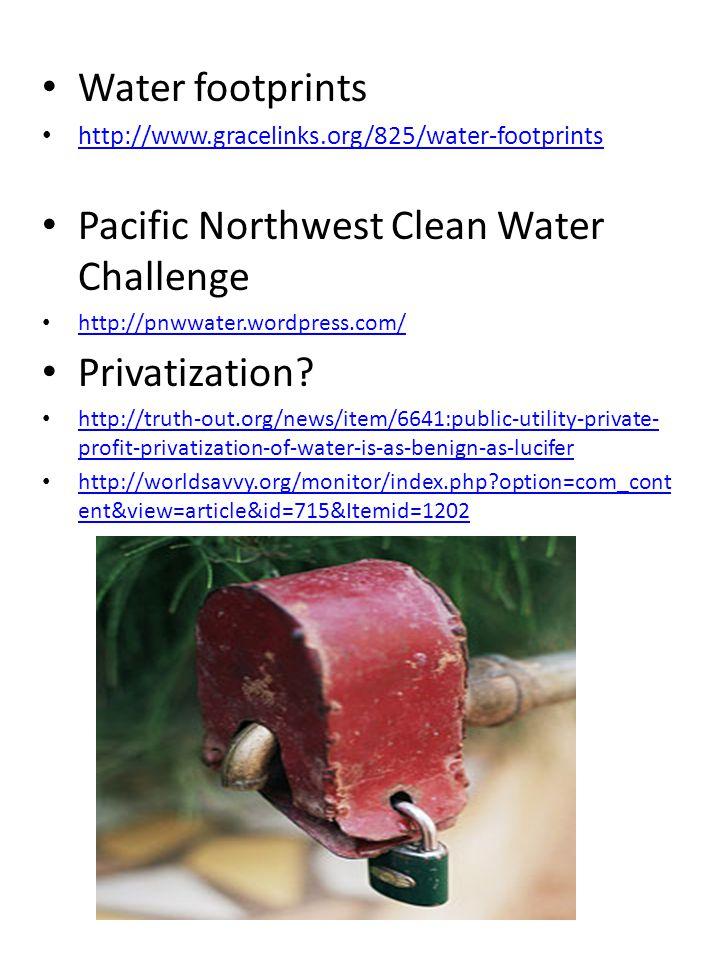 Water footprints http://www.gracelinks.org/825/water-footprints Pacific Northwest Clean Water Challenge http://pnwwater.wordpress.com/ Privatization?