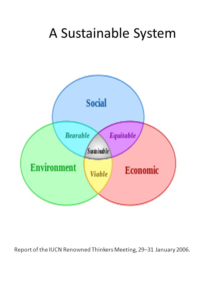 Report of the IUCN Renowned Thinkers Meeting, 29–31 January 2006. A Sustainable System
