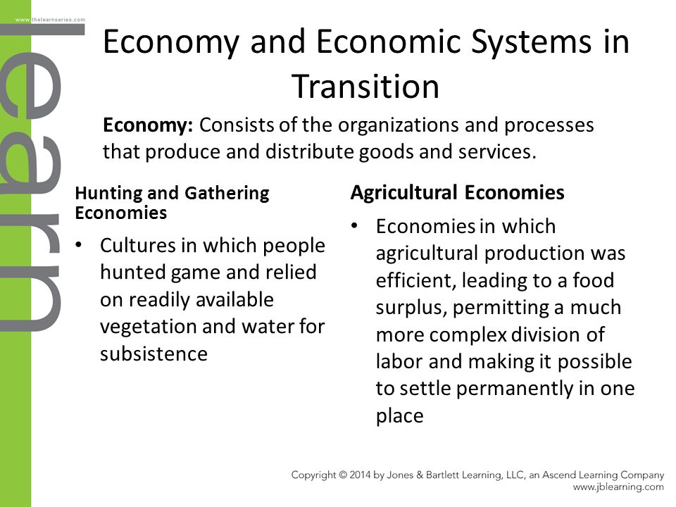 Economy and Economic Systems in Transition Hunting and Gathering Economies Cultures in which people hunted game and relied on readily available vegeta