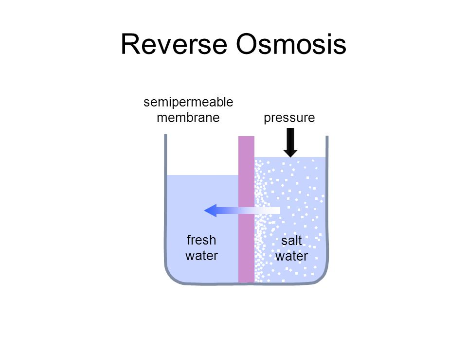 semipermeable membrane pressure fresh water Reverse Osmosis salt water
