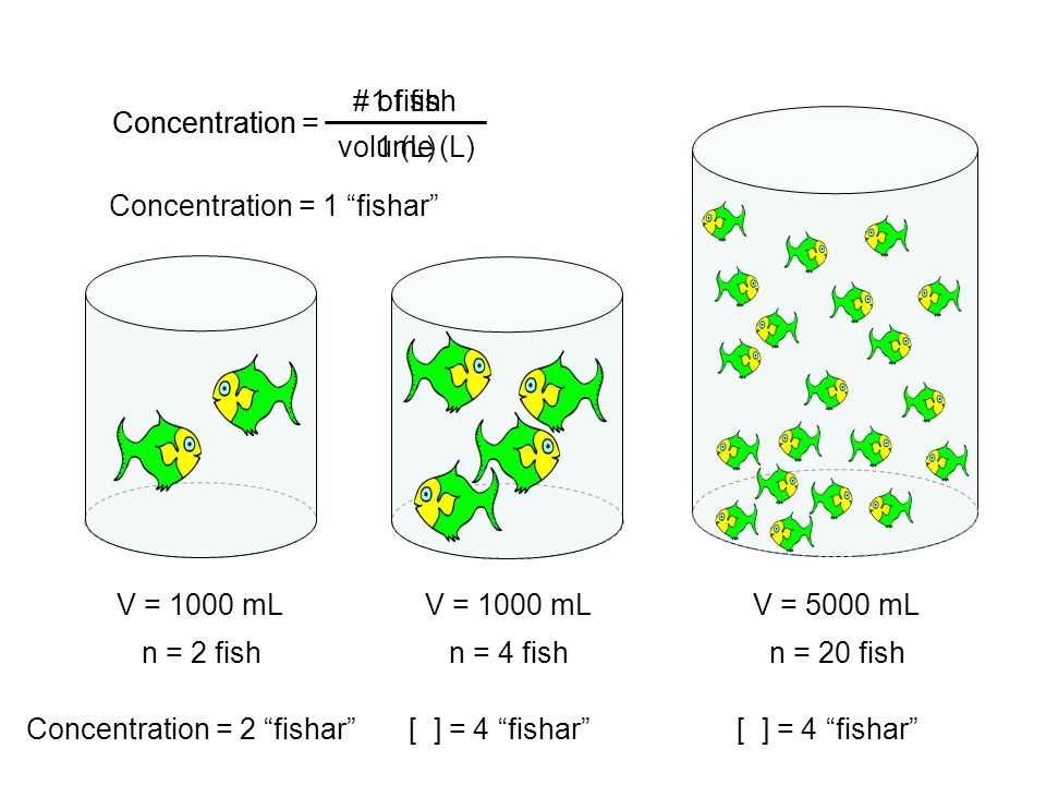 Concentration = # of fish volume (L) Concentration = V = 1000 mL n = 2 fish Concentration = 2 fishar V = 1000 mL n = 4 fish [ ] = 4 fishar V = 5000 mL n = 20 fish [ ] = 4 fishar 1 fish 1 (L) Concentration = 1 fishar