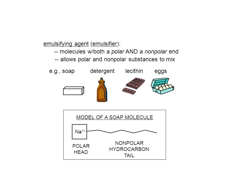 MODEL OF A SOAP MOLECULE NONPOLAR HYDROCARBON TAIL POLAR HEAD Na 1+ emulsifying agent (emulsifier): -- molecules w/both a polar AND a nonpolar end -- allows polar and nonpolar substances to mix detergentlecithineggse.g., soap