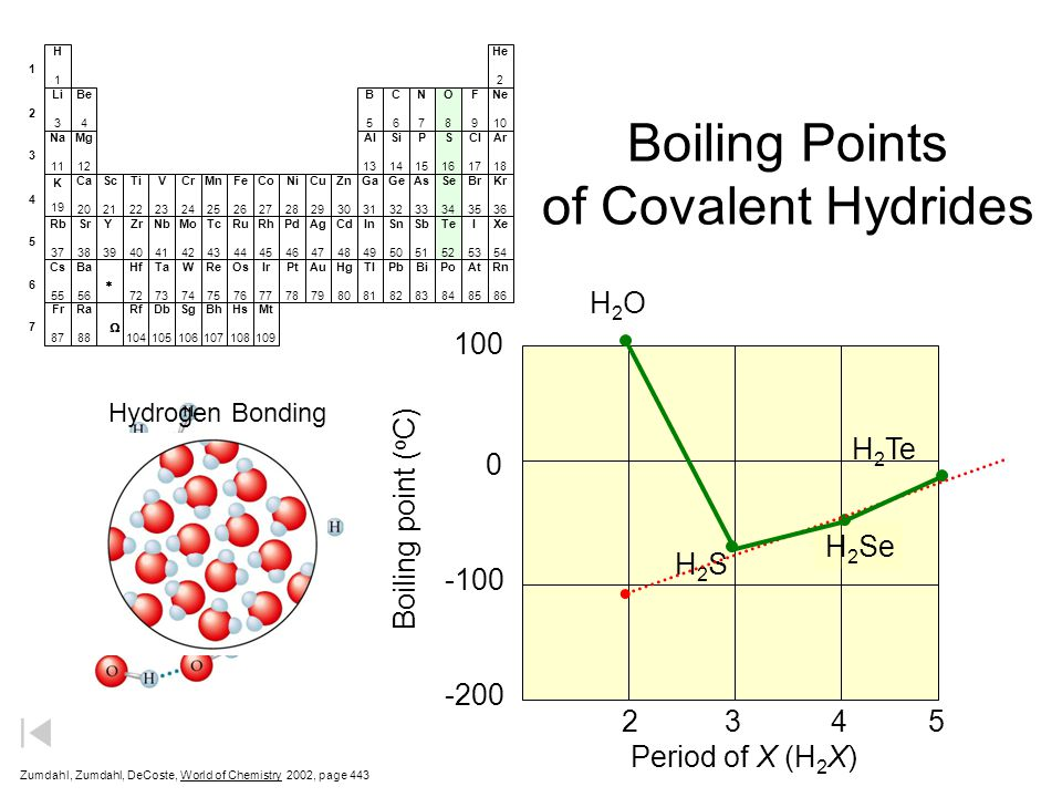 Boiling Points of Covalent Hydrides Zumdahl, Zumdahl, DeCoste, World of Chemistry  2002, page 443 100 0 -100 -200 Period of X (H 2 X) Boiling point ( o C) H2OH2O H2SH2S H 2 Se H 2 Te 2345 Li 3 He 2 C6C6 N7N7 O8O8 F9F9 Ne 10 Na 11 B5B5 Be 4 H1H1 Al 13 Si 14 P 15 S 16 Cl 17 Ar 18 K 19 Ca 20 Sc 21 Ti 22 V 23 Cr 24 Mn 25 Fe 26 Co 27 Ni 28 Cu 29 Zn 30 Ga 31 Ge 32 As 33 Se 34 Br 35 Kr 36 Rb 37 Sr 38 Y 39 Zr 40 Nb 41 Mo 42 Tc 43 Ru 44 Rh 45 Pd 46 Ag 47 Cd 48 In 49 Sn 50 Sb 51 Te 52 I 53 Xe 54 Cs 55 Ba 56 Hf 72 Ta 73 W 74 Re 75 Os 76 Ir 77 Pt 78 Au 79 Hg 80 Tl 81 Pb 82 Bi 83 Po 84 At 85 Rn 86 Fr 87 Ra 88 Rf 104 Db 105 Sg 106 Bh 107 Hs 108 Mt 109 Mg 12 1 2 3 4 5 6 7   Hydrogen Bonding