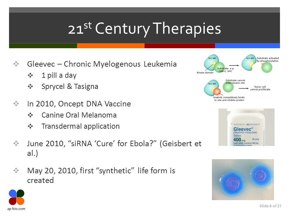 Slide 8 of 27 21 st Century Therapies  Gleevec – Chronic Myelogenous Leukemia  1 pill a day  Sprycel & Tasigna  In 2010, Oncept DNA Vaccine  Cani