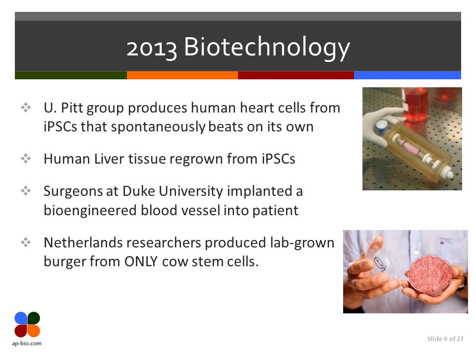 Slide 9 of 27 2013 Biotechnology  U. Pitt group produces human heart cells from iPSCs that spontaneously beats on its own  Human Liver tissue regrow
