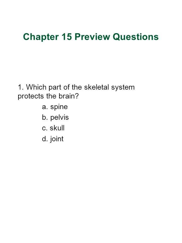 Chapter 15 Preview Questions 1.Which part of the skeletal system protects the brain.