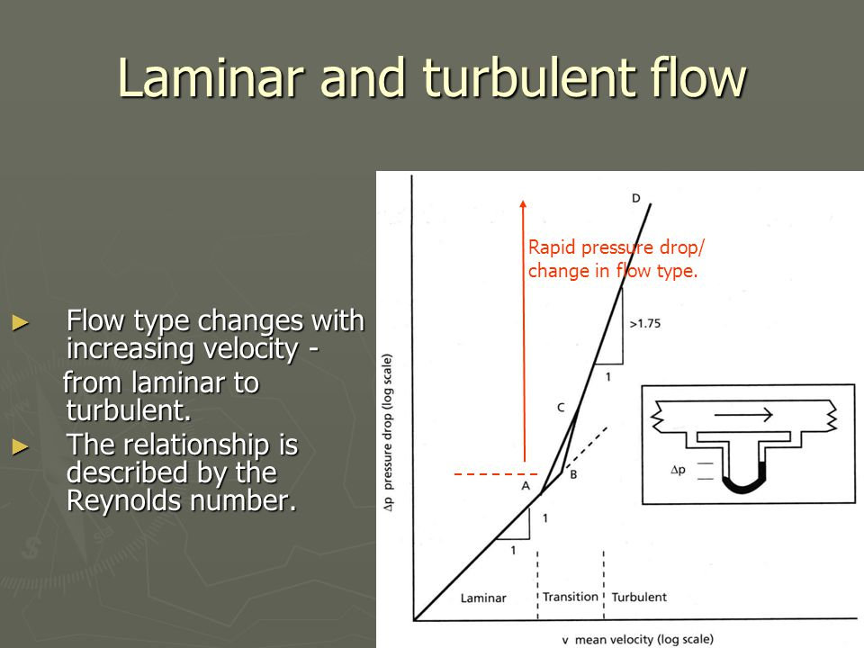 Laminar and turbulent flow ► Flow type changes with increasing velocity - from laminar to turbulent. from laminar to turbulent. ► The relationship is