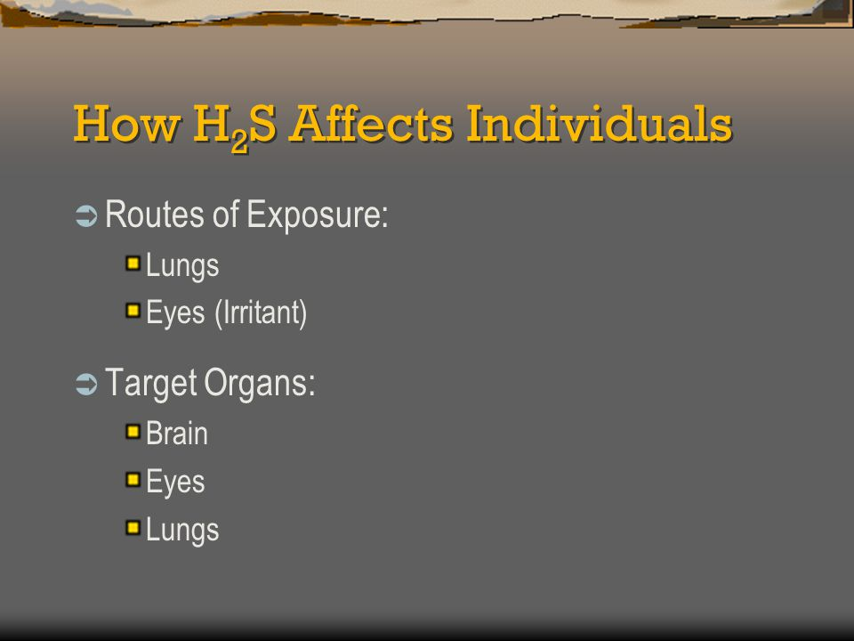 How H 2 S Affects Individuals  Routes of Exposure: Lungs Eyes (Irritant)  Target Organs: Brain Eyes Lungs