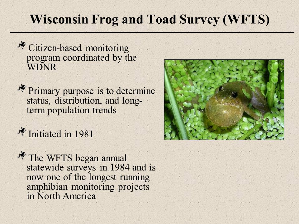 Wisconsin NatureMapping (WNM) Frog and Toad Survey A citizen-based biodiversity survey program (mammals, birds, amphibians and reptiles of Wisconsin) Managed by the Citizen Science Center at Beaver Creek Reserve (Fall Creek, WI) WNM Frog and Toad Survey is a special project of Wisconsin NatureMapping, follows the same protocol as WFTS but choose routes