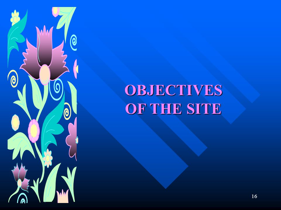 16 OBJECTIVES OF THE SITE