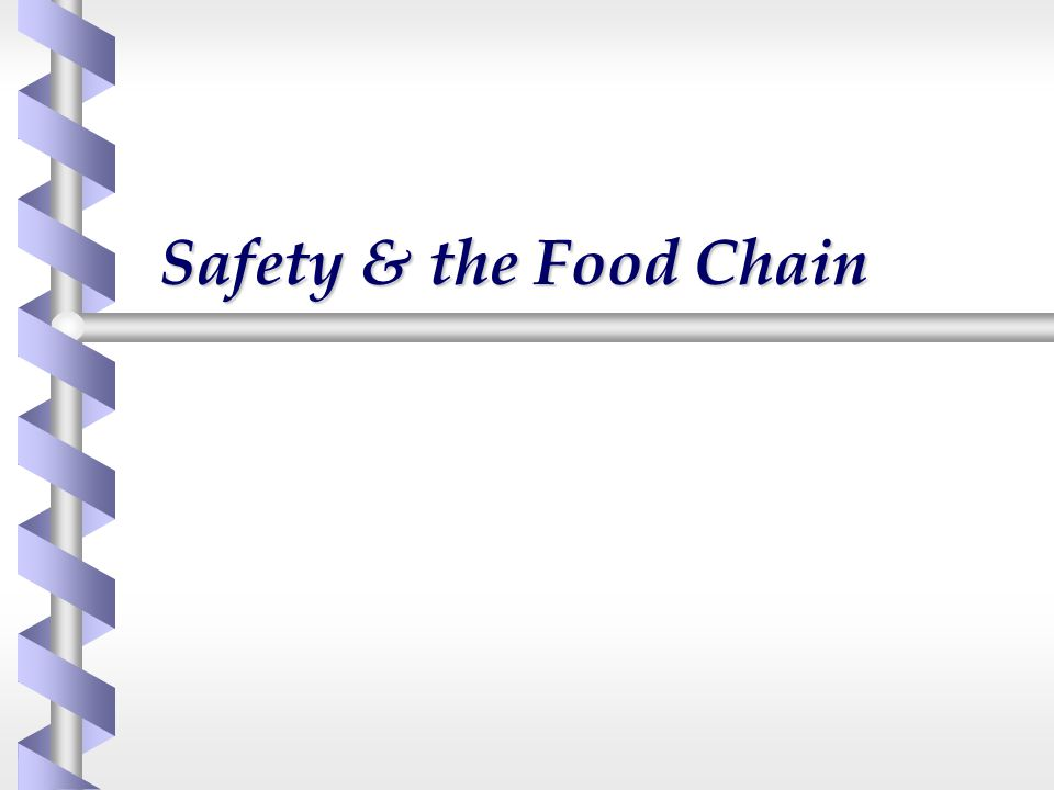Safety & the Food Chain