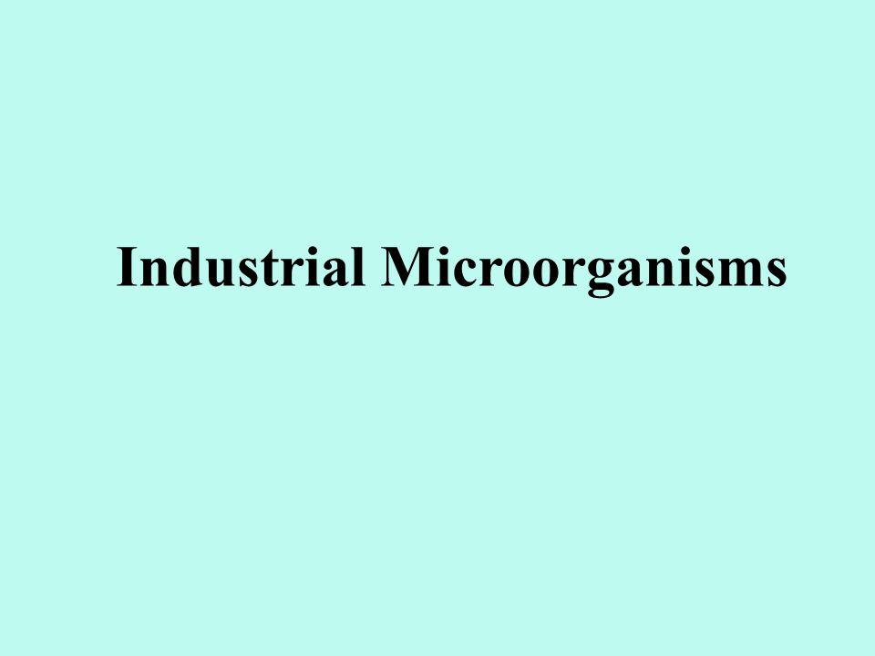 Industrial Microorganisms