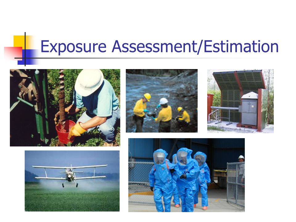 Exposure Assessment/Estimation