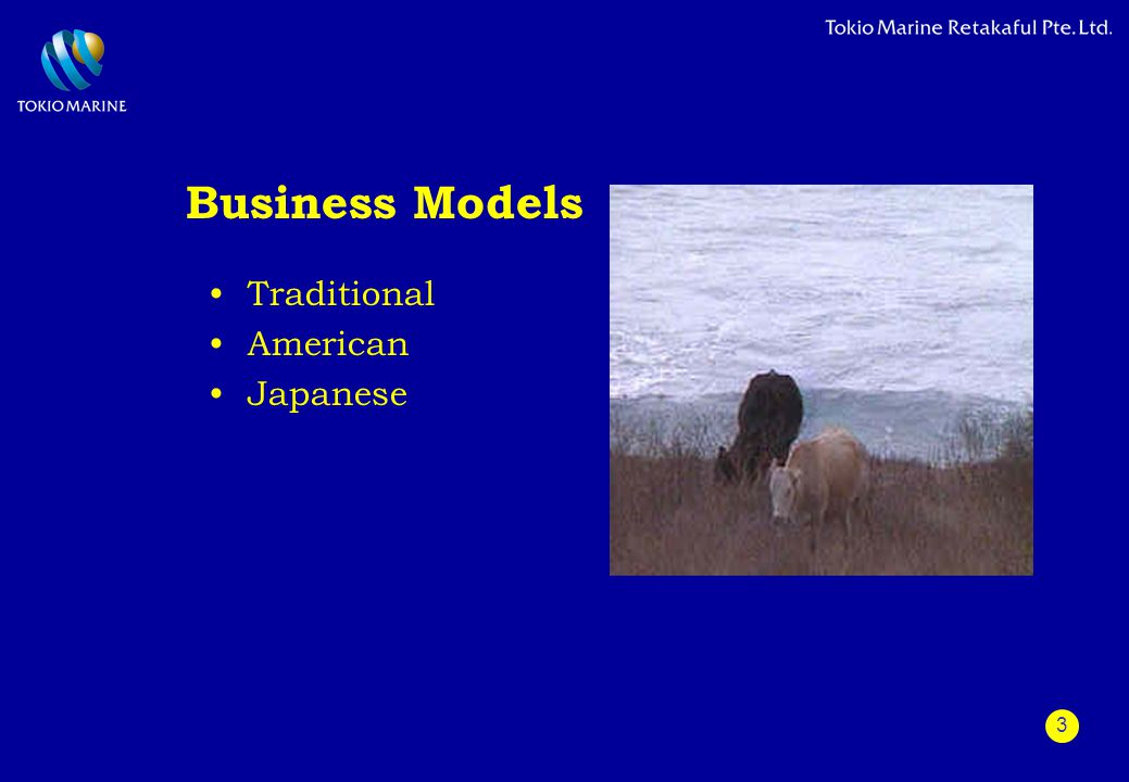 3 Business Models Traditional American Japanese