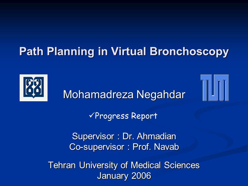 Path Planning in Virtual Bronchoscopy Mohamadreza Negahdar Supervisor : Dr.