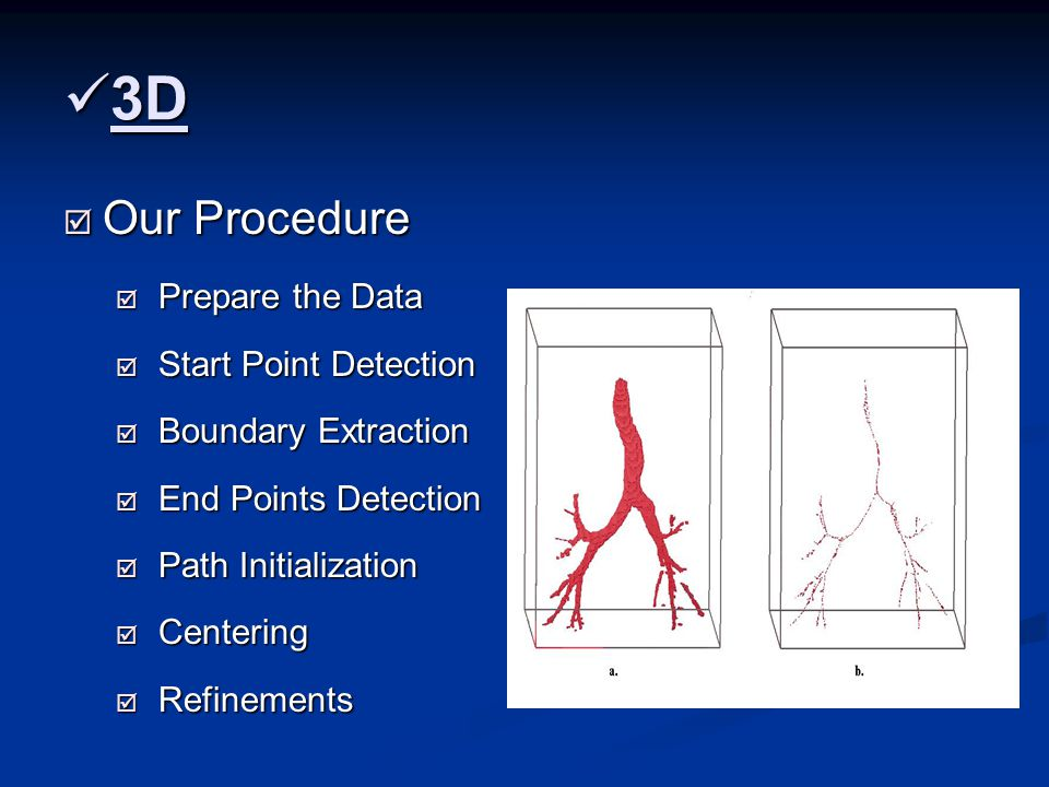 3D 3D  Our Procedure  Prepare the Data  Start Point Detection  Boundary Extraction  End Points Detection  Path Initialization  Centering  Refinements