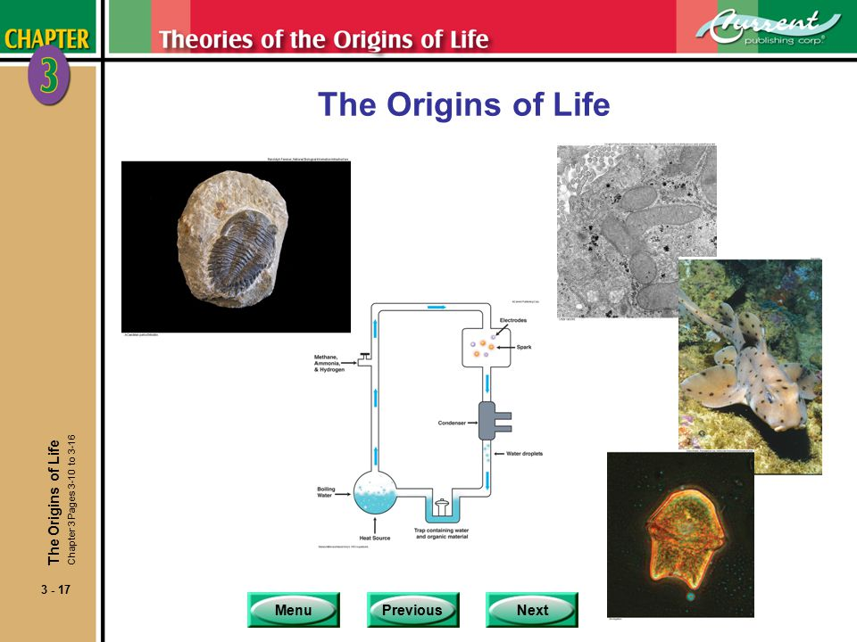 MenuPreviousNext 3 - 17 The Origins of Life Chapter 3 Pages 3-10 to 3-16
