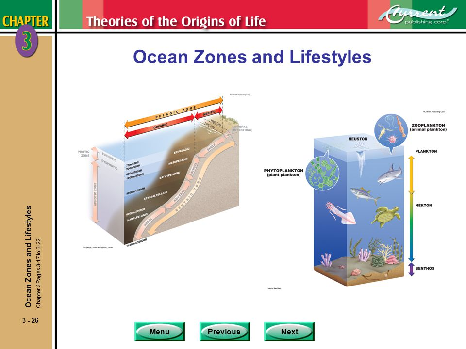 MenuPreviousNext 3 - 26 Ocean Zones and Lifestyles Chapter 3 Pages 3-17 to 3-22