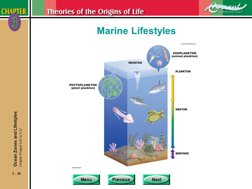 MenuPreviousNext 3 - 36 Marine Lifestyles Ocean Zones and Lifestyles Chapter 3 Pages 3-20 to 3-22