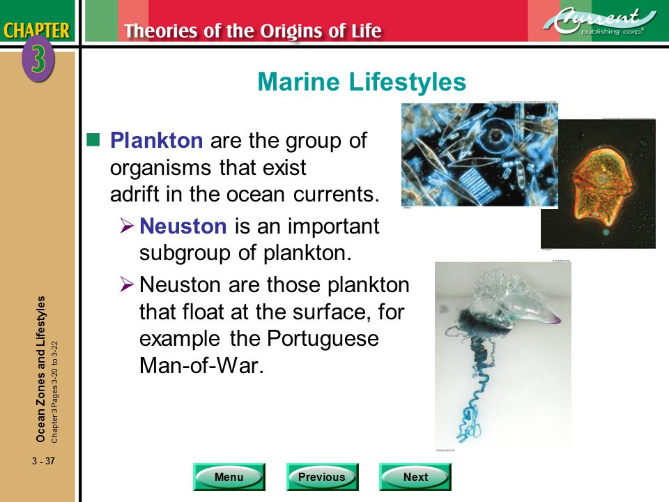 MenuPreviousNext 3 - 37 Marine Lifestyles nPlankton are the group of organisms that exist adrift in the ocean currents.