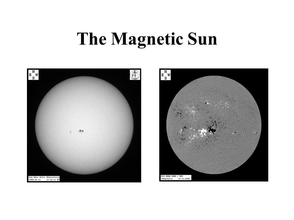 The Magnetic Corona Activity Maximum 1980 Activity Minimum 1994