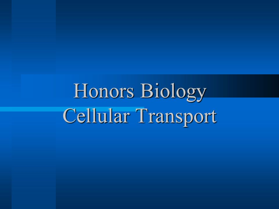 Honors Biology Cellular Transport