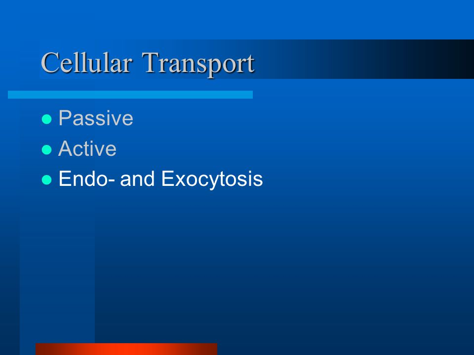 Cellular Transport Passive Active Endo- and Exocytosis
