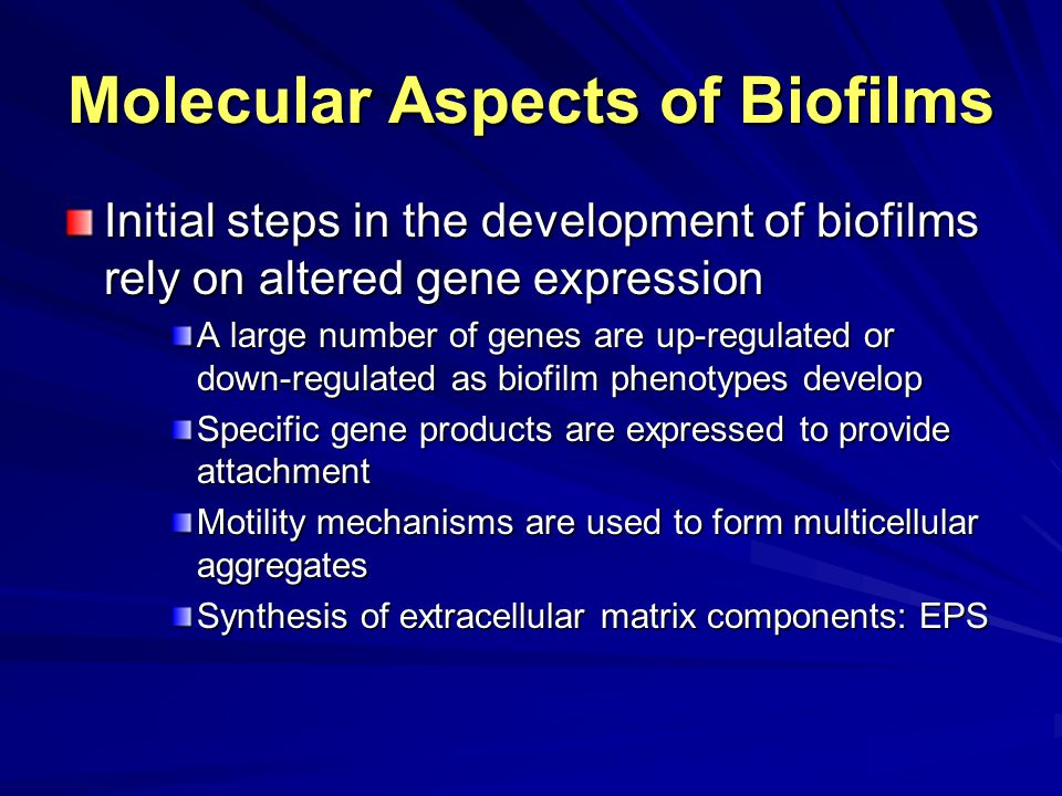 Molecular Aspects of Biofilms Initial steps in the development of biofilms rely on altered gene expression A large number of genes are up-regulated or down-regulated as biofilm phenotypes develop Specific gene products are expressed to provide attachment Motility mechanisms are used to form multicellular aggregates Synthesis of extracellular matrix components: EPS