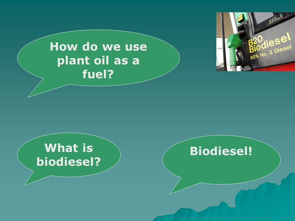 Biodiesel! How do we use plant oil as a fuel What is biodiesel