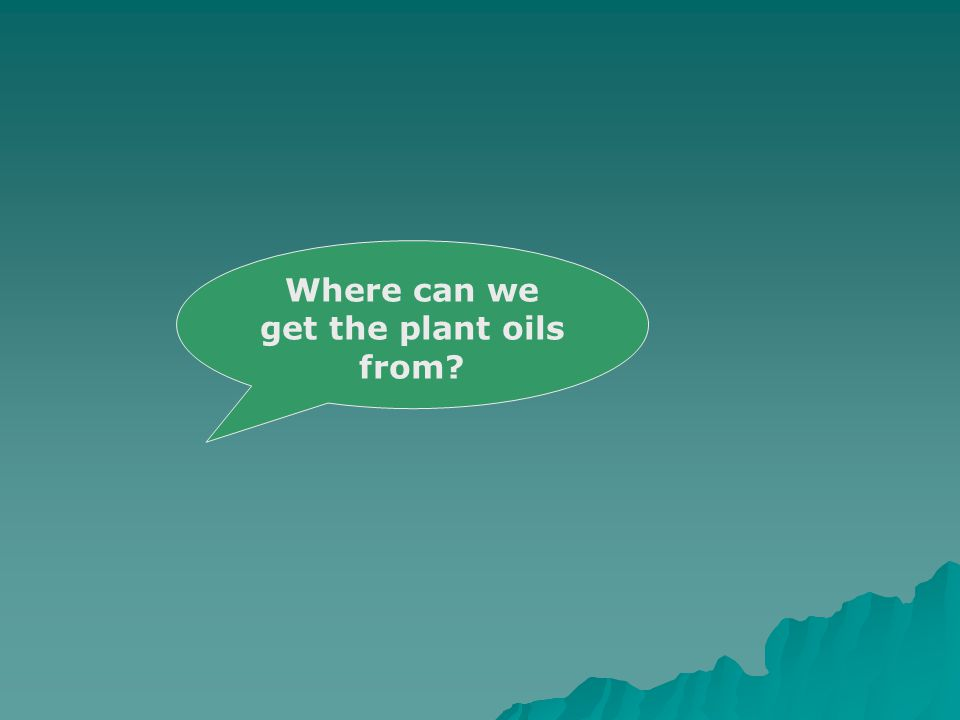 Where can we get the plant oils from?