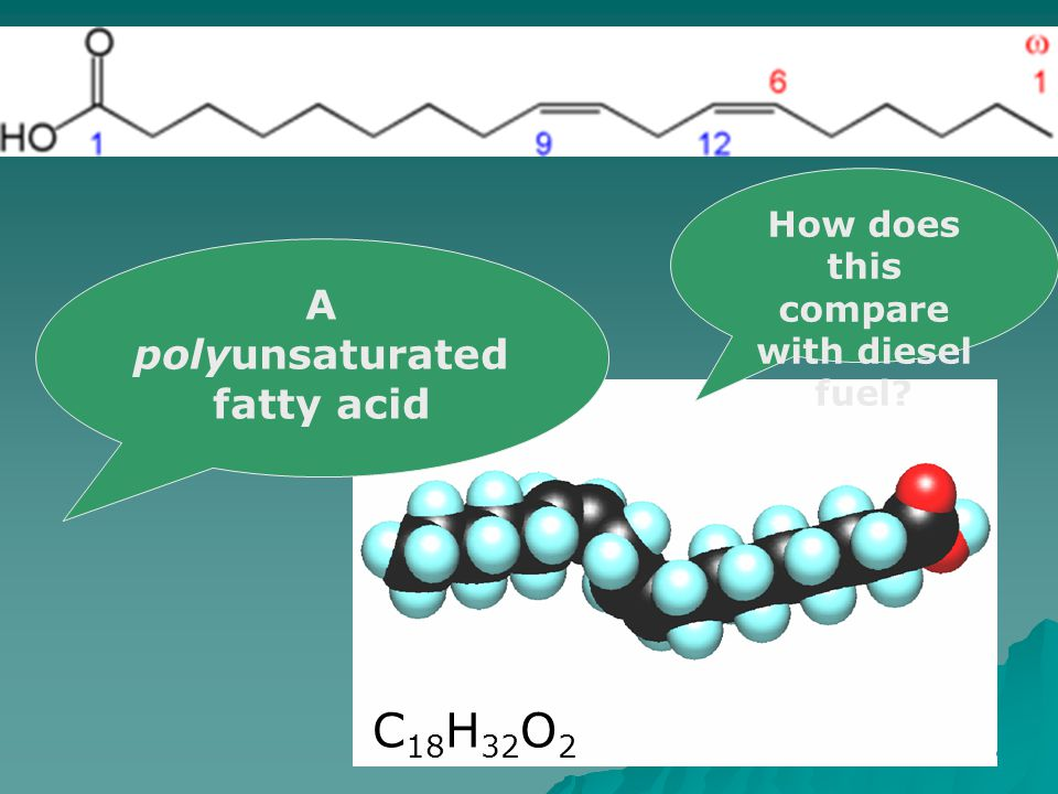 A polyunsaturated fatty acid C 18 H 32 O 2 How does this compare with diesel fuel
