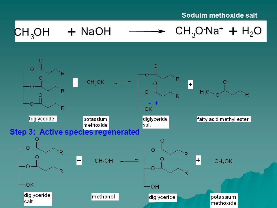 - + Soduim methoxide salt Step 3: Active species regenerated H2OH2O CH 3 OH NaOH CH 3 O-O- Na + H2OH2O + +