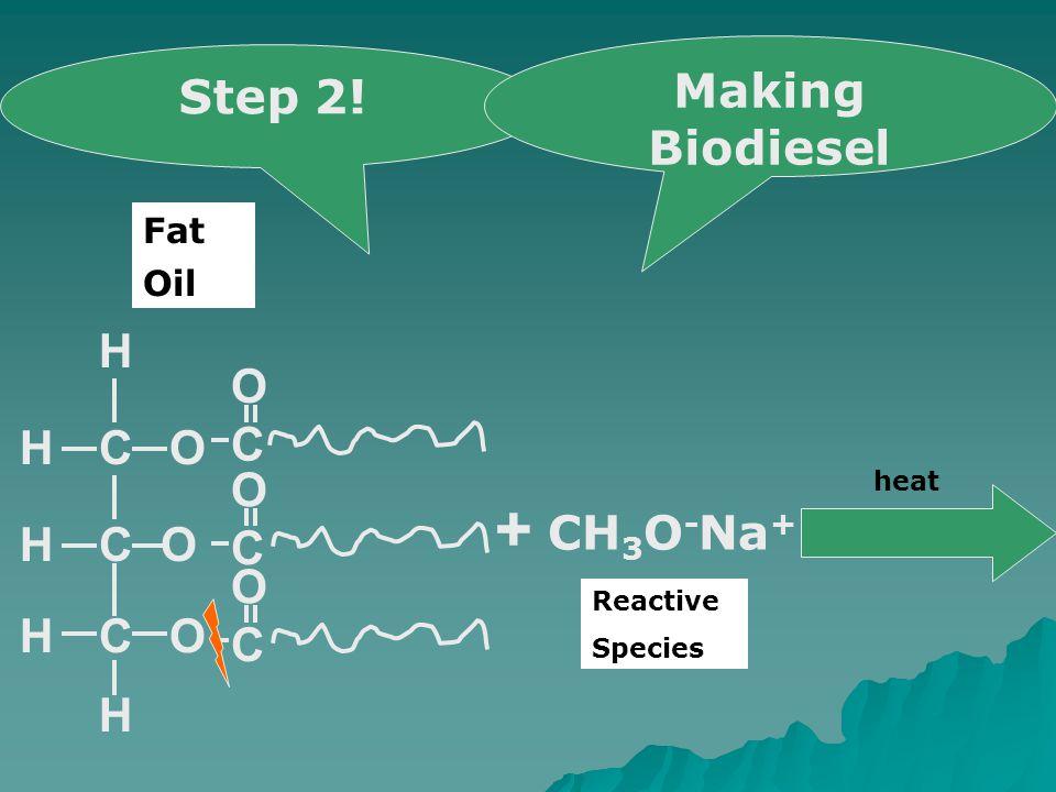 COH CO OCH H H H C O C O C O + CH 3 O - Na + heat Step 2! Making Biodiesel Oil Fat Reactive Species