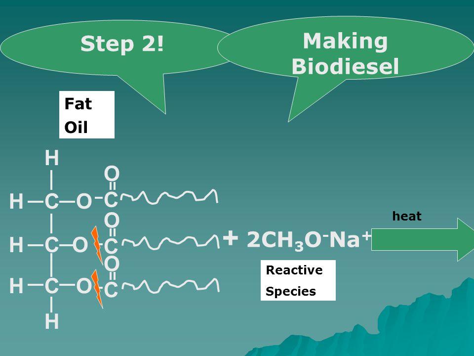 COH CO OCH H H H C O C O C O + 2CH 3 O - Na + heat Step 2! Making Biodiesel Oil Fat Reactive Species